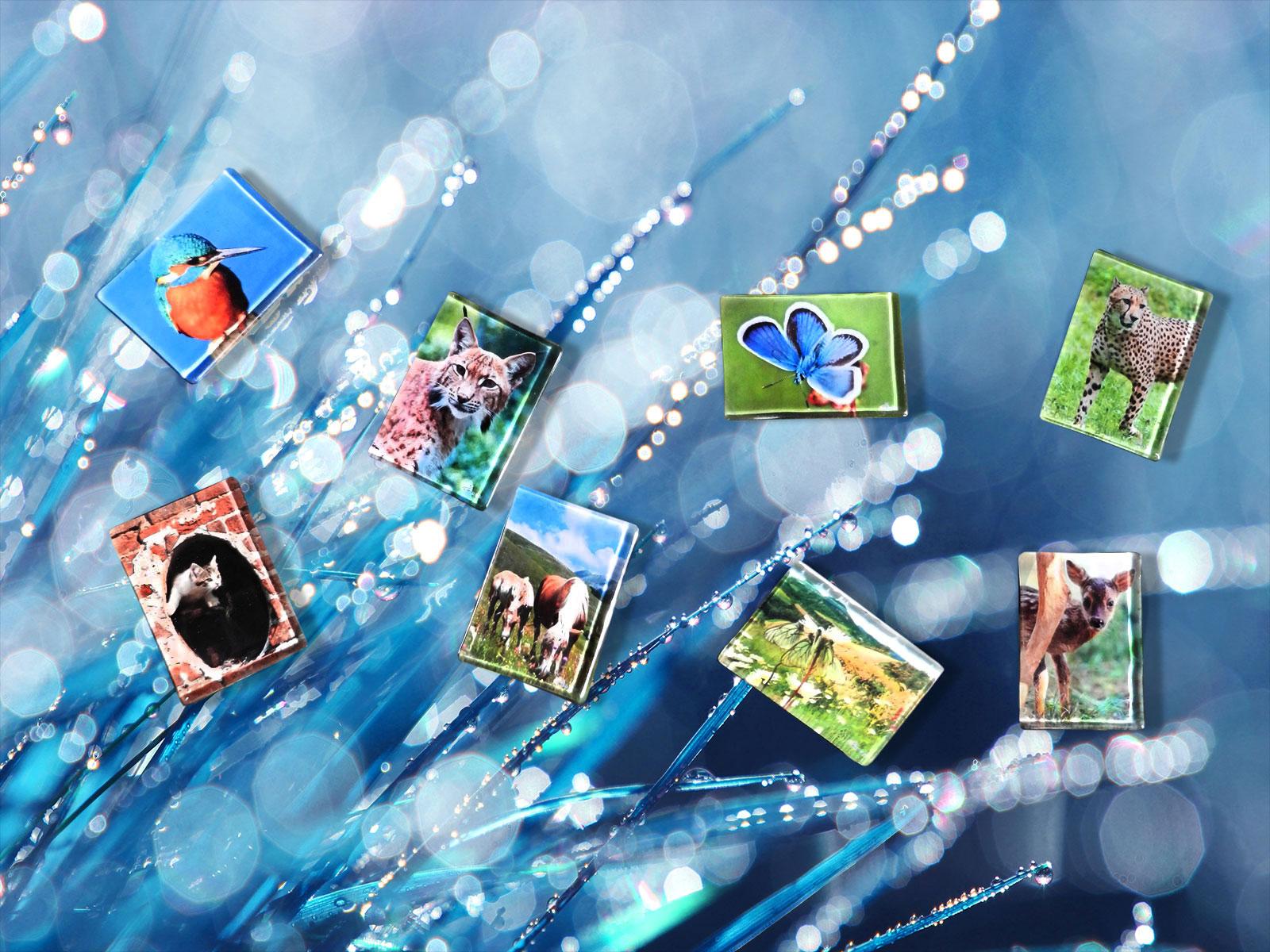 Piccoli oggetti con stampa su vetro