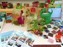 Idee regalo in vetro